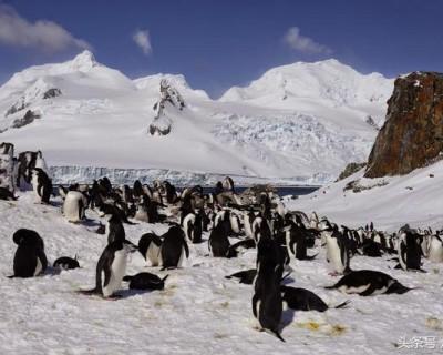 南极洲有哪些国家(南极洲概况简介)