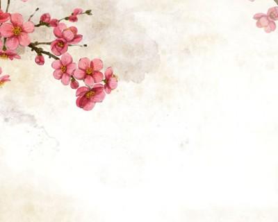 复古花朵花卉PPT背景图片