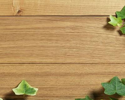 自然木板藤蔓PPT背景图片