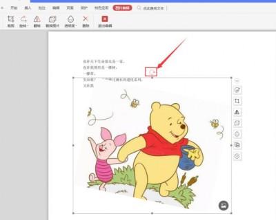 如何旋转PDF里图片的方向