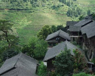 农村赚钱好项目要加强互联网建设