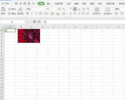 Excel如何添加照片提示
