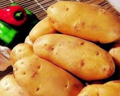 土豆发芽了还能不能吃? 切掉发芽了的部分就可以吃了吗?