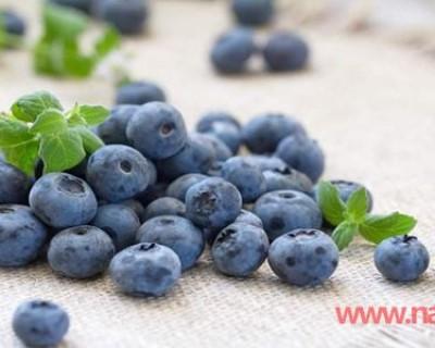 蓝莓的功效与作用不仅仅是护眼,别嫌它贵真的物有所值!