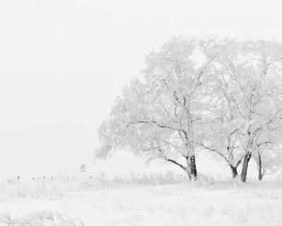 冬天的诗句有哪些?描写冬天的古诗名句你知道几个?